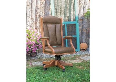 DC55  Desk Arm Chair